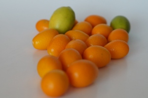 Kumquats und Limequats