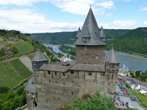 Burgen und Riesling Steillagen im Rheingau