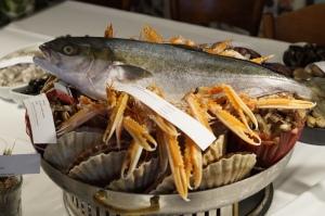 Kingfisch, Scampi, Jakobsmuschel