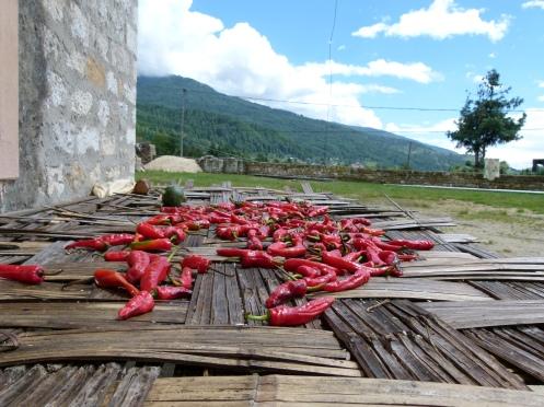 Chilis werden gerne getrocknet