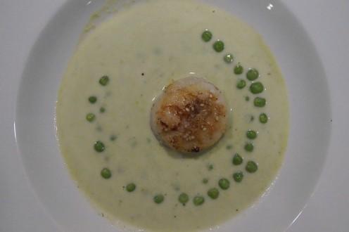 Erbsen Estragon Suppe mit Jakobsmuschel