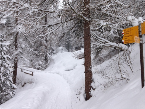 verschneite Winterwanderwege